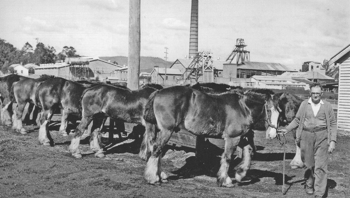 A mining expert's praise for pit ponies