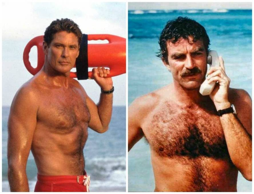 Hairy Situation: David Hasselhoff and Tom Selleck rocked chest hair in Baywatch and Magnum P.I. back in the day.