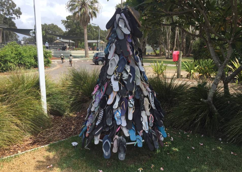 Aussie Aussie Aussie: This tree at Swansea caravan park caught our attention. We wonder if more of these will grow elsewhere.