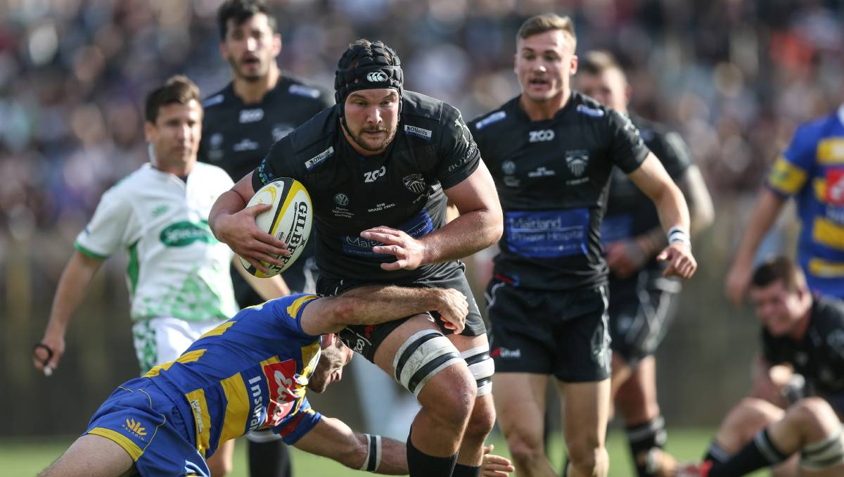 Newcastle rugby union: New coach unveils grand plans for Blacks