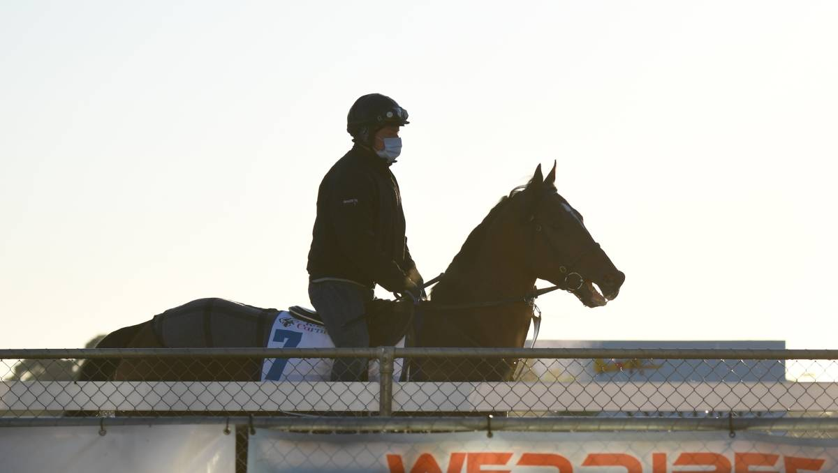 Racing: Melbourne Cup back-up no sure thing for Ashrun if he wins Lexus Hotham Stakes