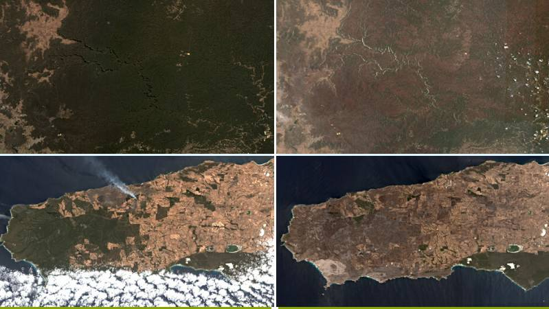 All images courtesy of Google Earth Engine, Landsat and Sentinel-2.